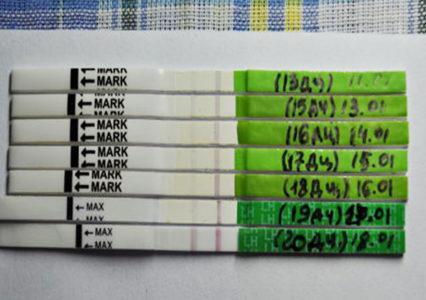 Календарь расчетов
