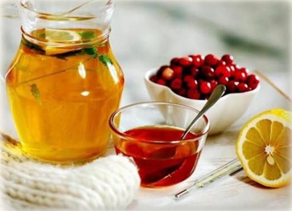 Мед, травяной чай, клюква и лимон