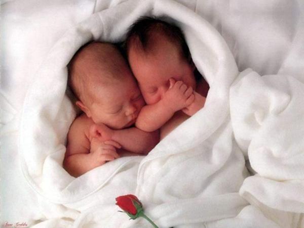 Двойняшки в покрывале